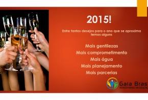 Desejos Para 2015!